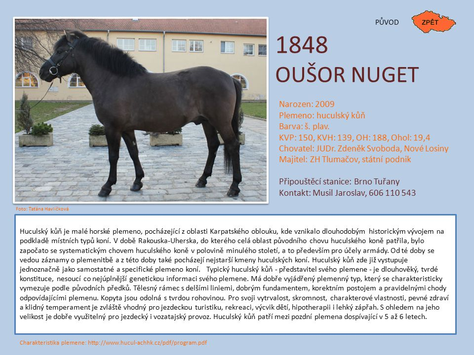 1848 OUŠOR NUGET Narozen: 2009 Plemeno: huculský kůň Barva: š. plav.