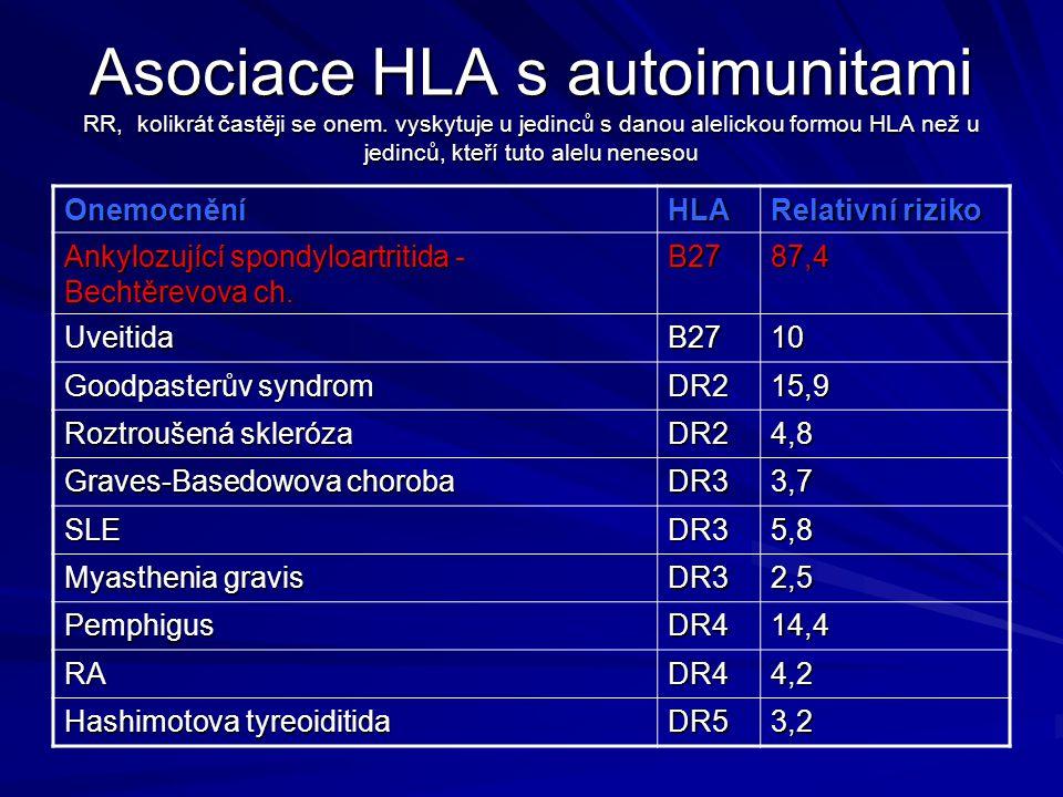 Asociace HLA s autoimunitami RR, kolikrát častěji se onem