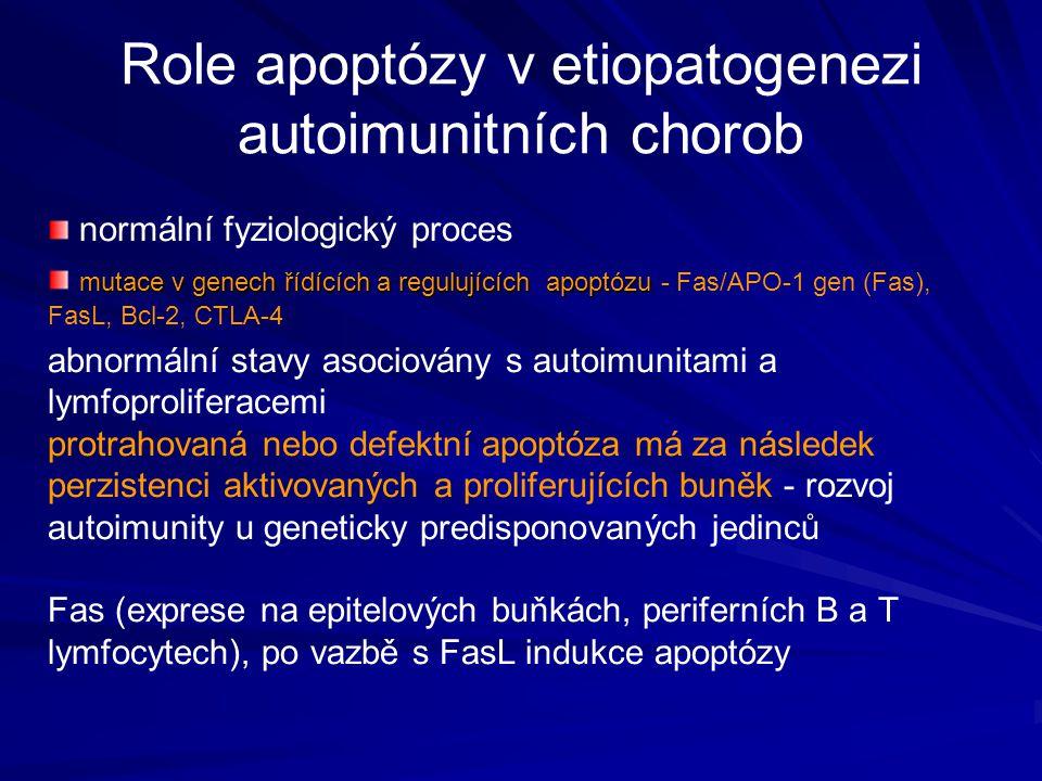 Role apoptózy v etiopatogenezi autoimunitních chorob