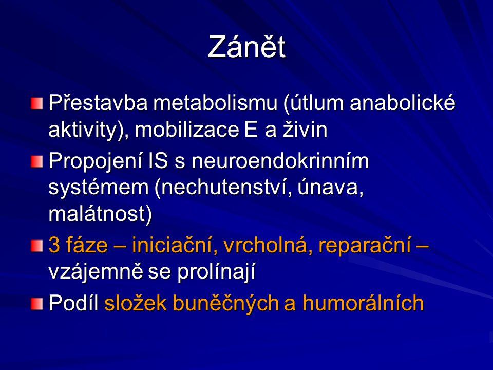 Zánět Přestavba metabolismu (útlum anabolické aktivity), mobilizace E a živin.