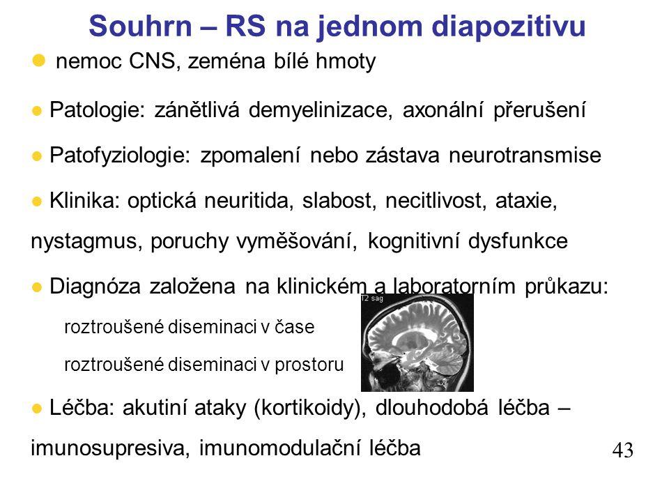 Souhrn – RS na jednom diapozitivu