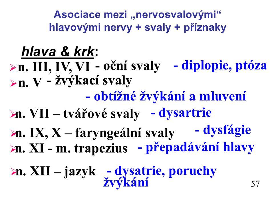 """Asociace mezi """"nervosvalovými hlavovými nervy + svaly + příznaky"""