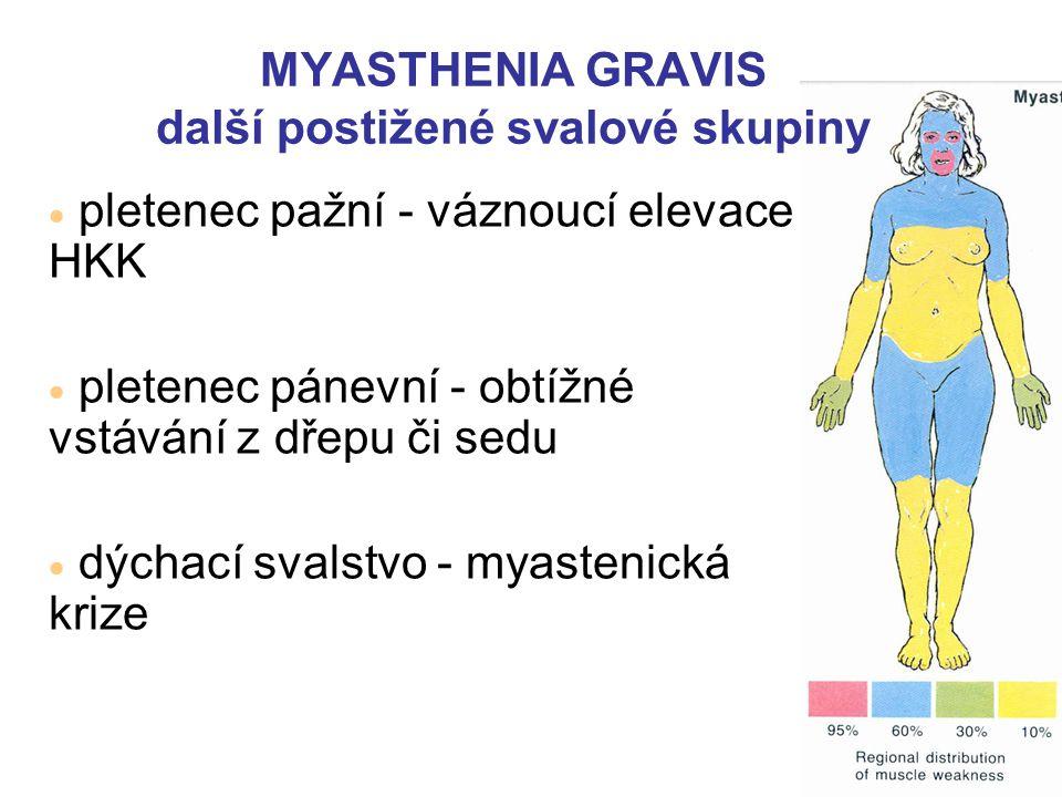 MYASTHENIA GRAVIS další postižené svalové skupiny