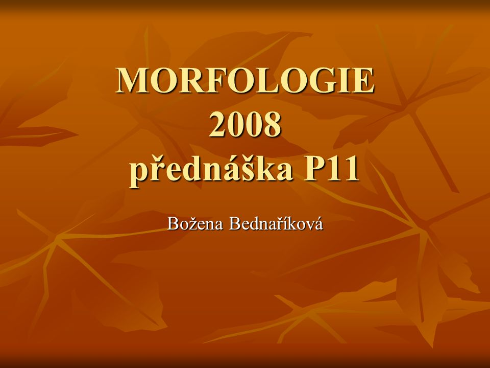 MORFOLOGIE 2008 přednáška P11