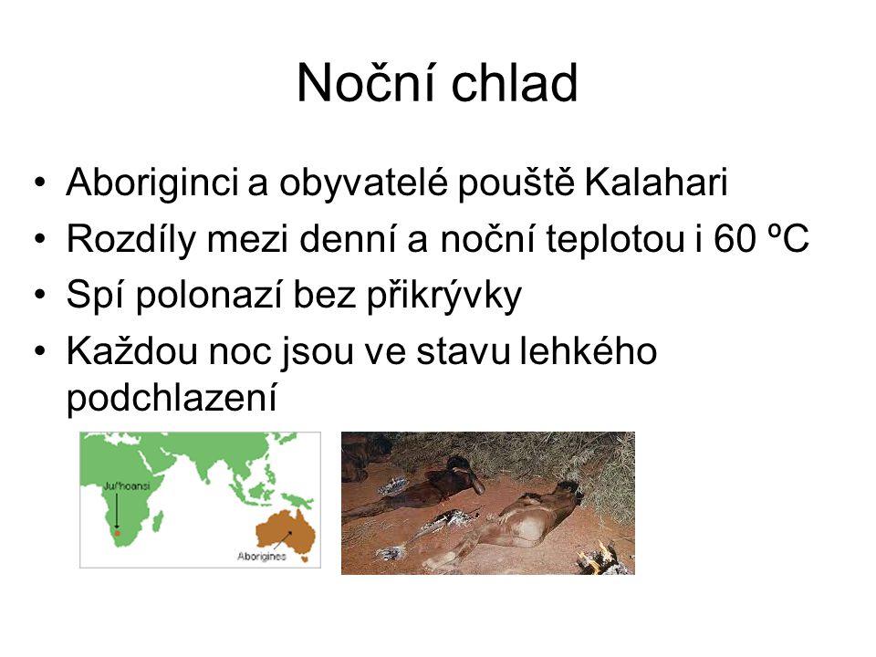 Noční chlad Aboriginci a obyvatelé pouště Kalahari