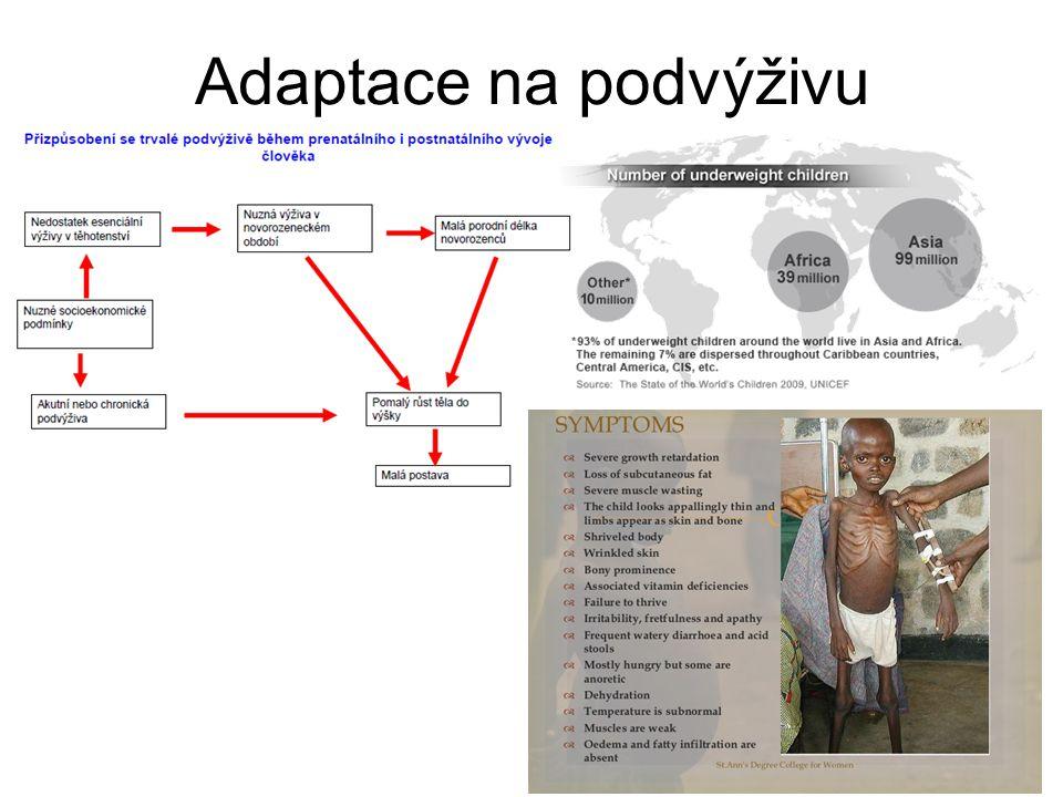 Adaptace na podvýživu