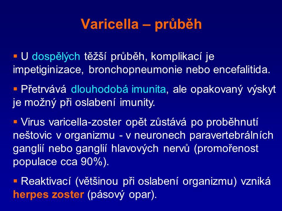 Varicella – průběh U dospělých těžší průběh, komplikací je impetiginizace, bronchopneumonie nebo encefalitida.