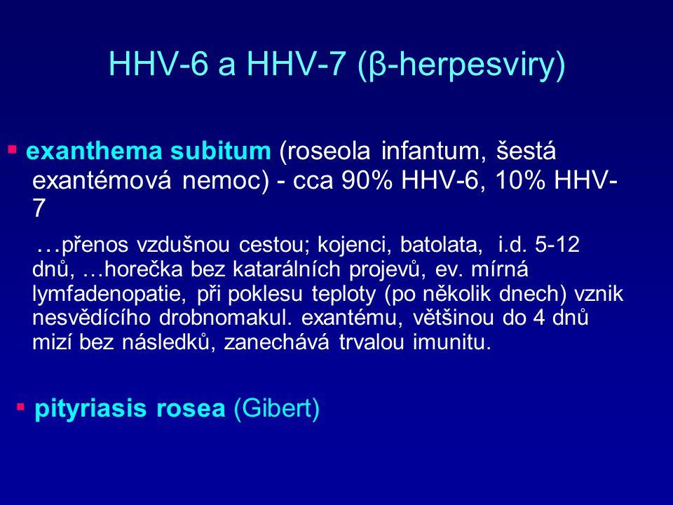 HHV-6 a HHV-7 (β-herpesviry)