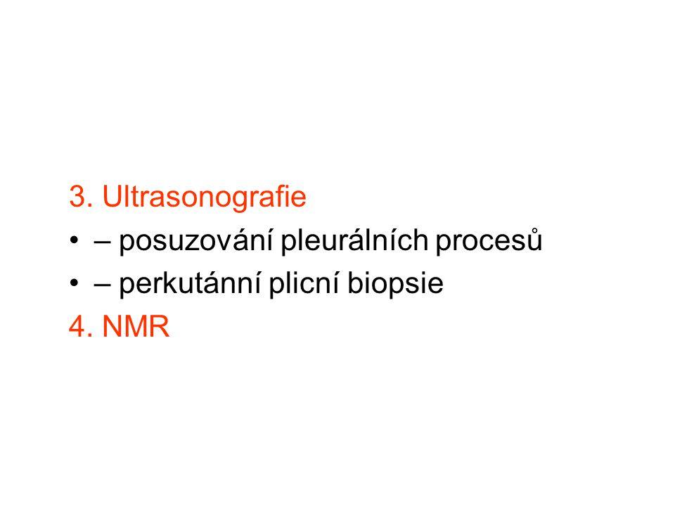 3. Ultrasonografie – posuzování pleurálních procesů – perkutánní plicní biopsie 4. NMR