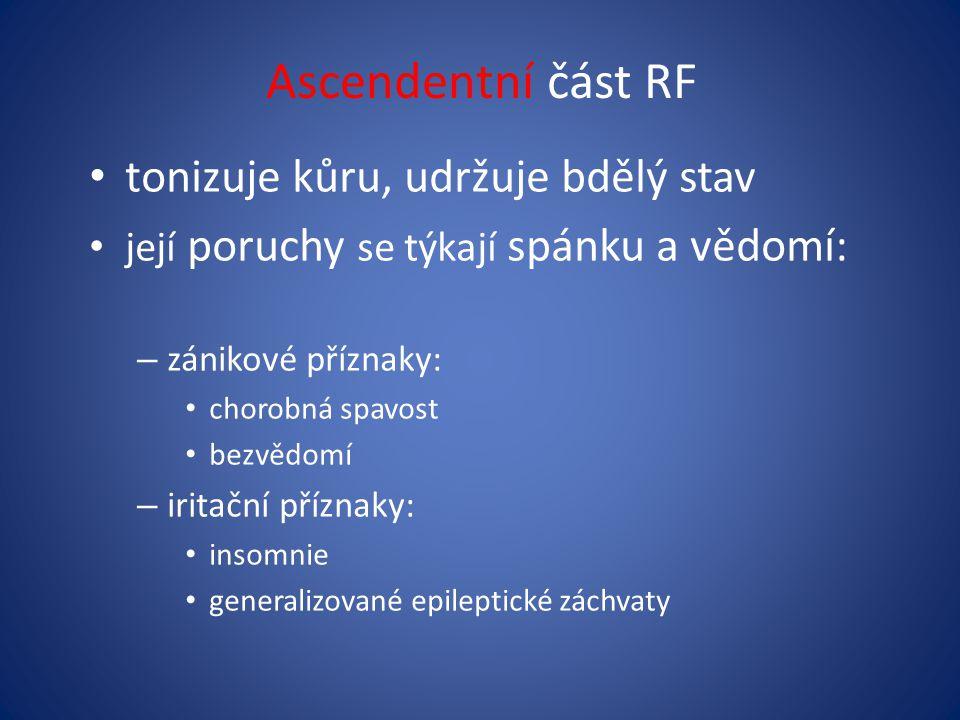 Ascendentní část RF tonizuje kůru, udržuje bdělý stav