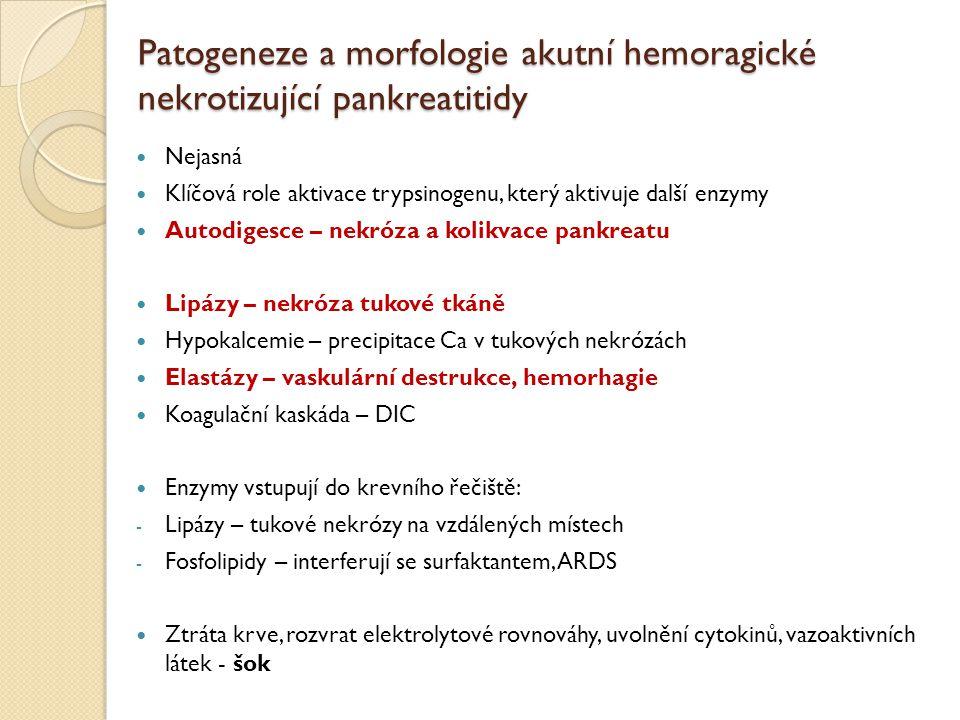 Patogeneze a morfologie akutní hemoragické nekrotizující pankreatitidy