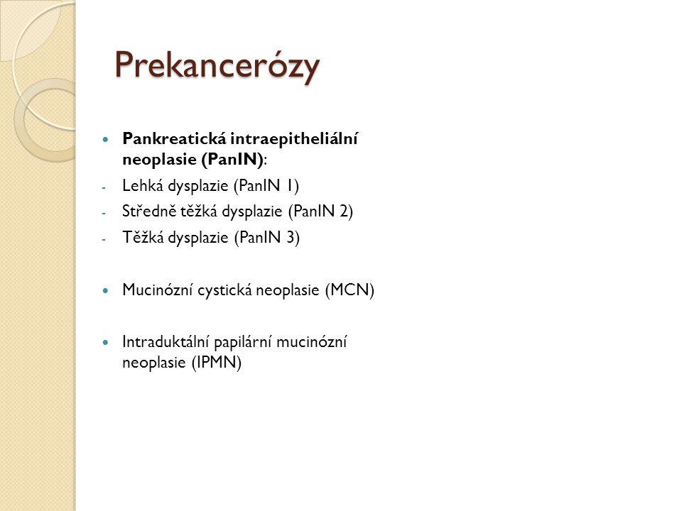 Prekancerózy Pankreatická intraepitheliální neoplasie (PanIN):