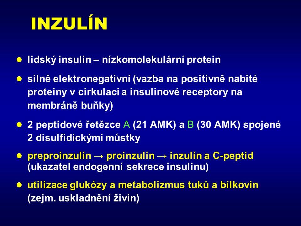 INZULÍN lidský insulin – nízkomolekulární protein