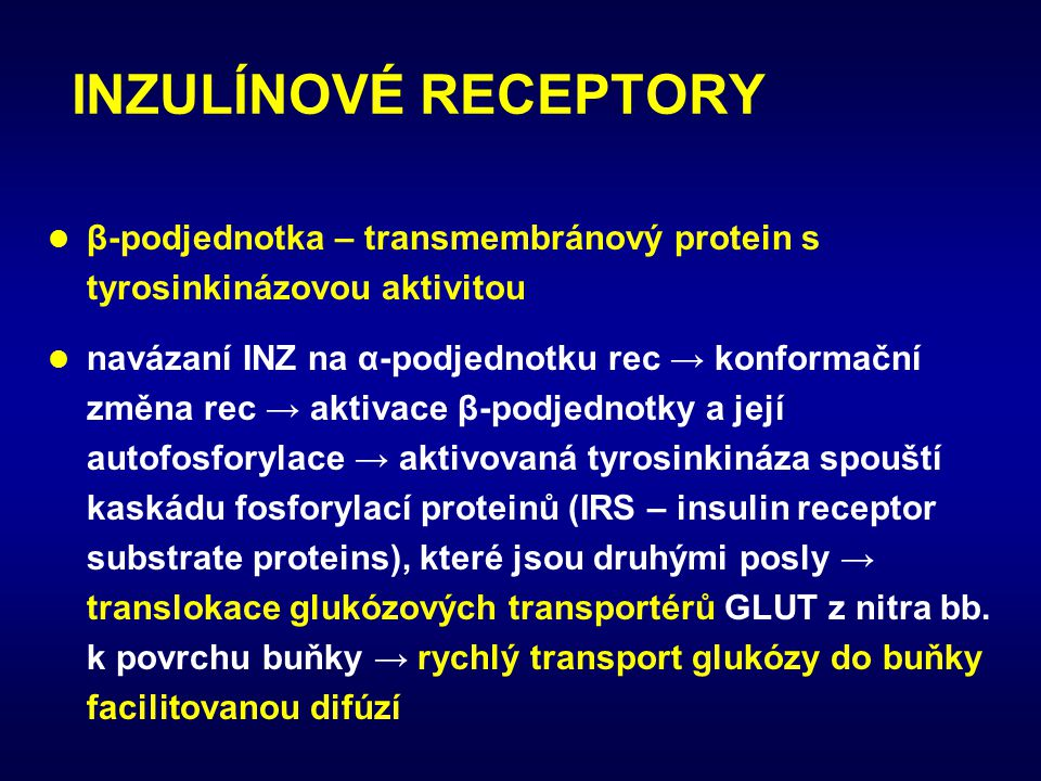 INZULÍNOVÉ RECEPTORY β-podjednotka – transmembránový protein s tyrosinkinázovou aktivitou.