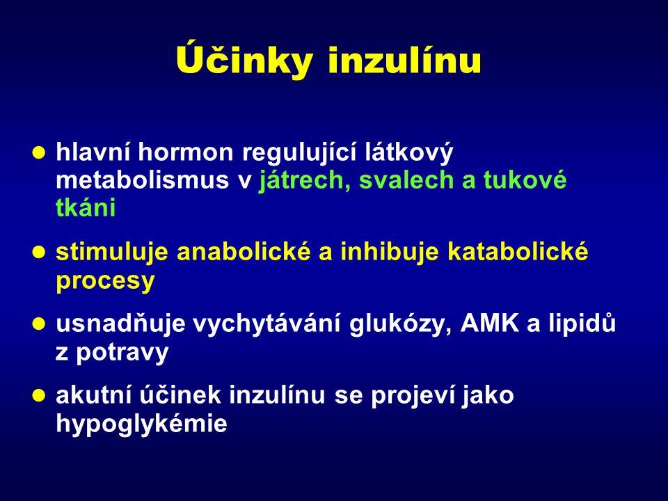 Účinky inzulínu hlavní hormon regulující látkový metabolismus v játrech, svalech a tukové tkáni. stimuluje anabolické a inhibuje katabolické procesy.