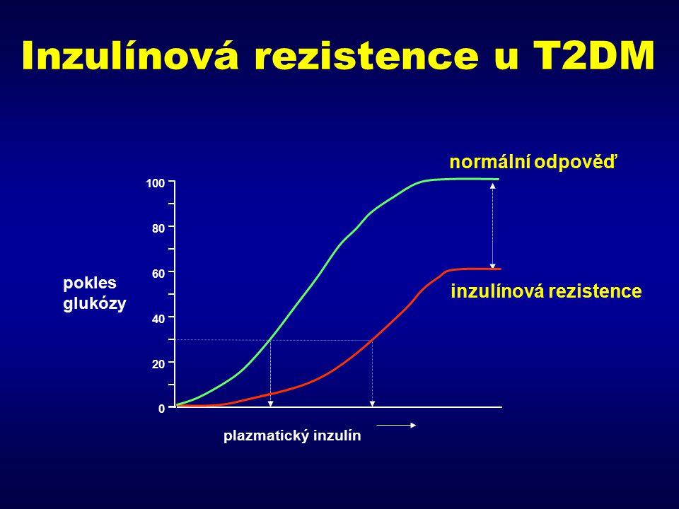 Inzulínová rezistence u T2DM