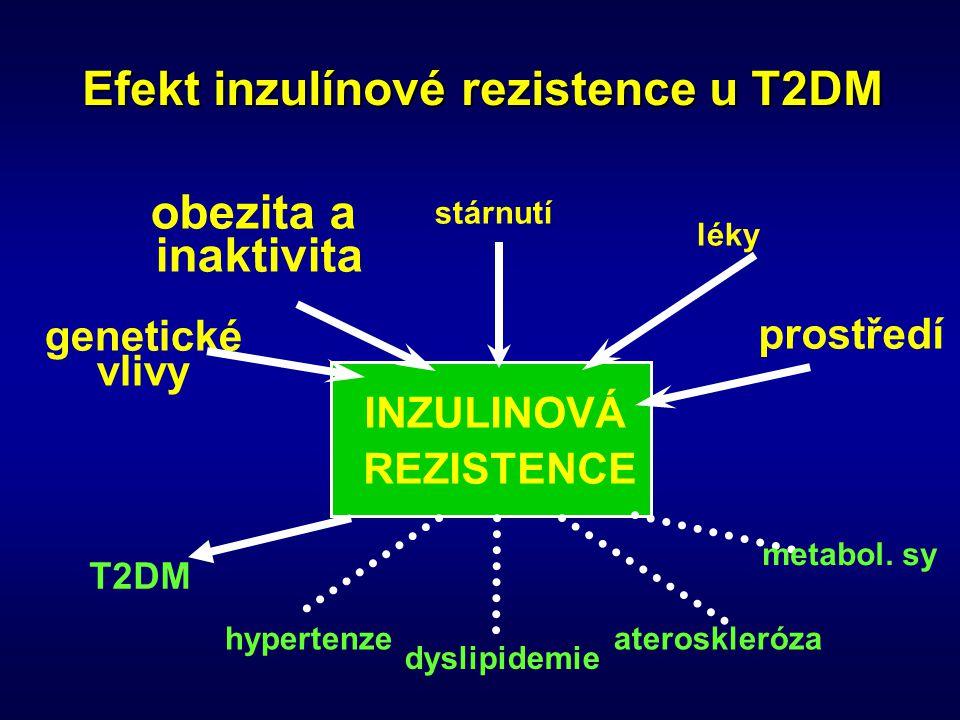 Efekt inzulínové rezistence u T2DM