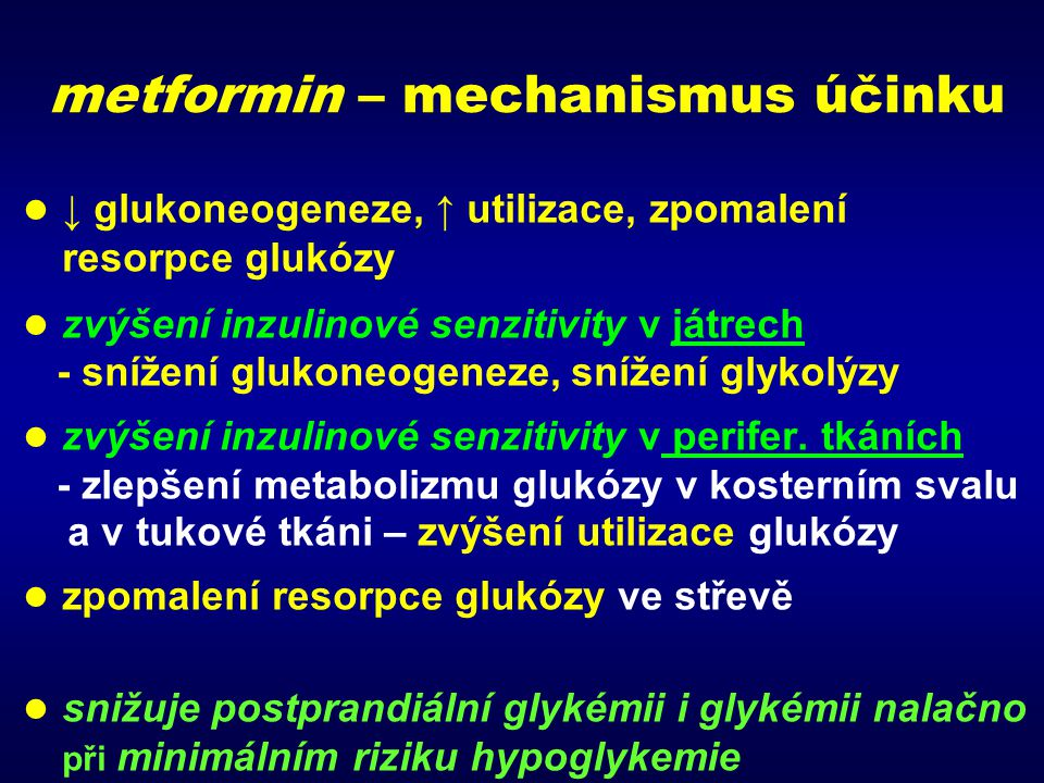 metformin – mechanismus účinku