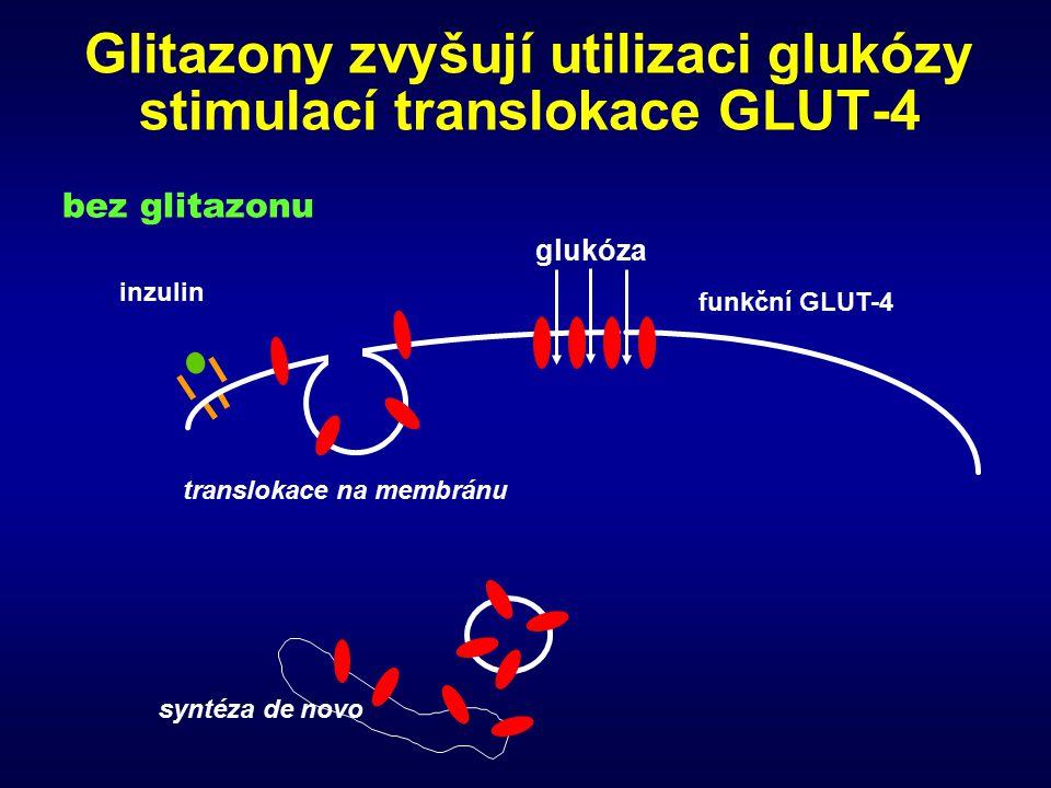 Glitazony zvyšují utilizaci glukózy stimulací translokace GLUT-4