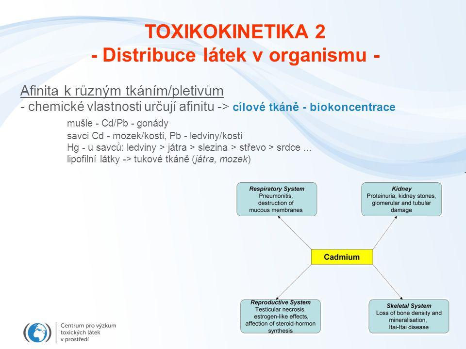 - Distribuce látek v organismu -