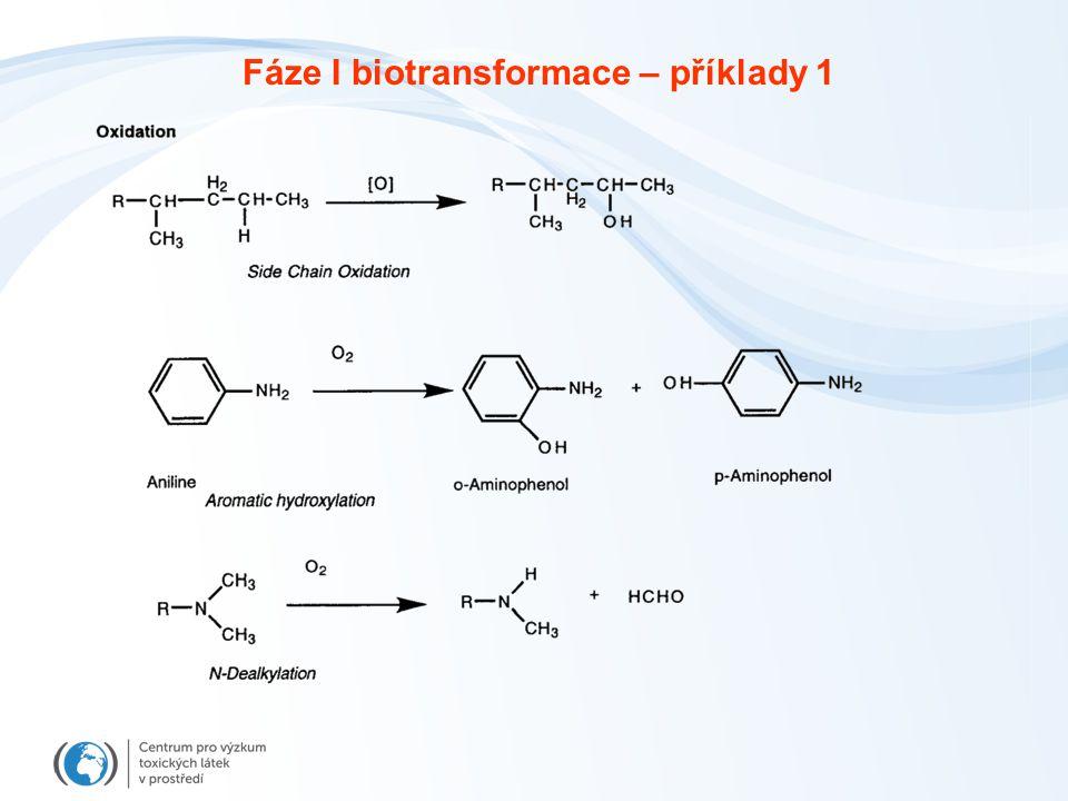 Fáze I biotransformace – příklady 1