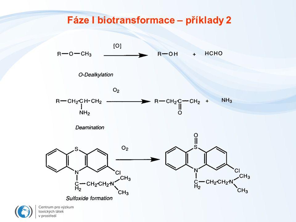Fáze I biotransformace – příklady 2