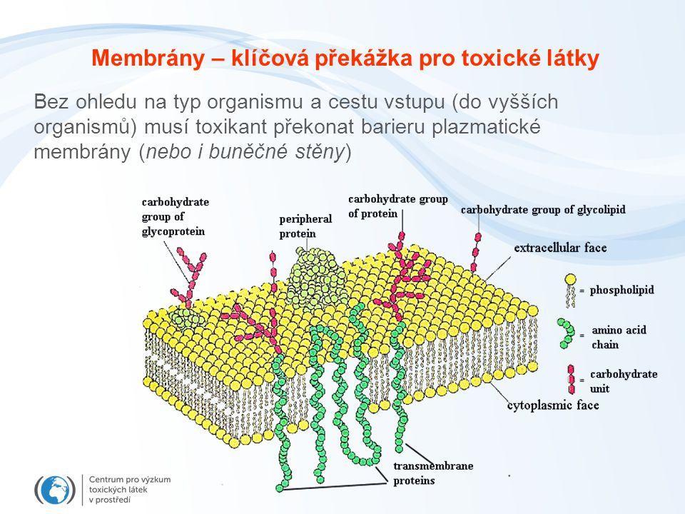 Membrány – klíčová překážka pro toxické látky
