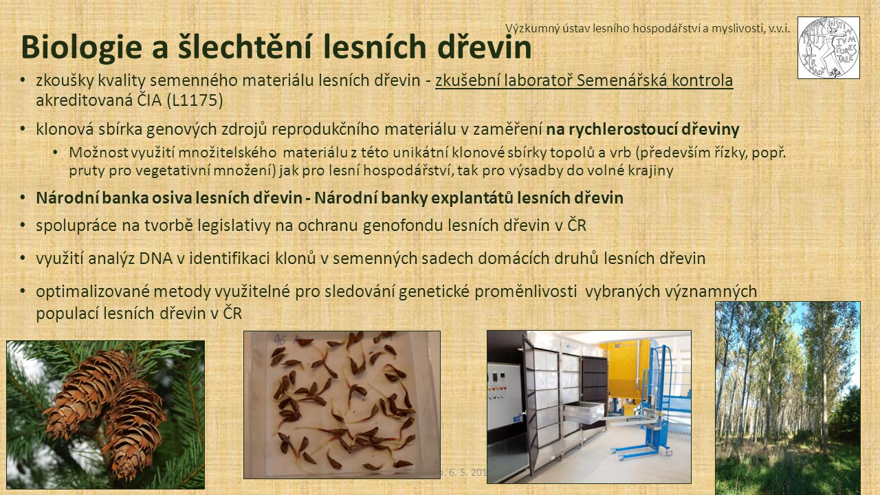 Biologie a šlechtění lesních dřevin