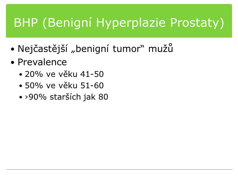 BHP (Benigní Hyperplazie Prostaty)