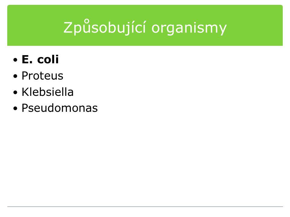 Způsobující organismy