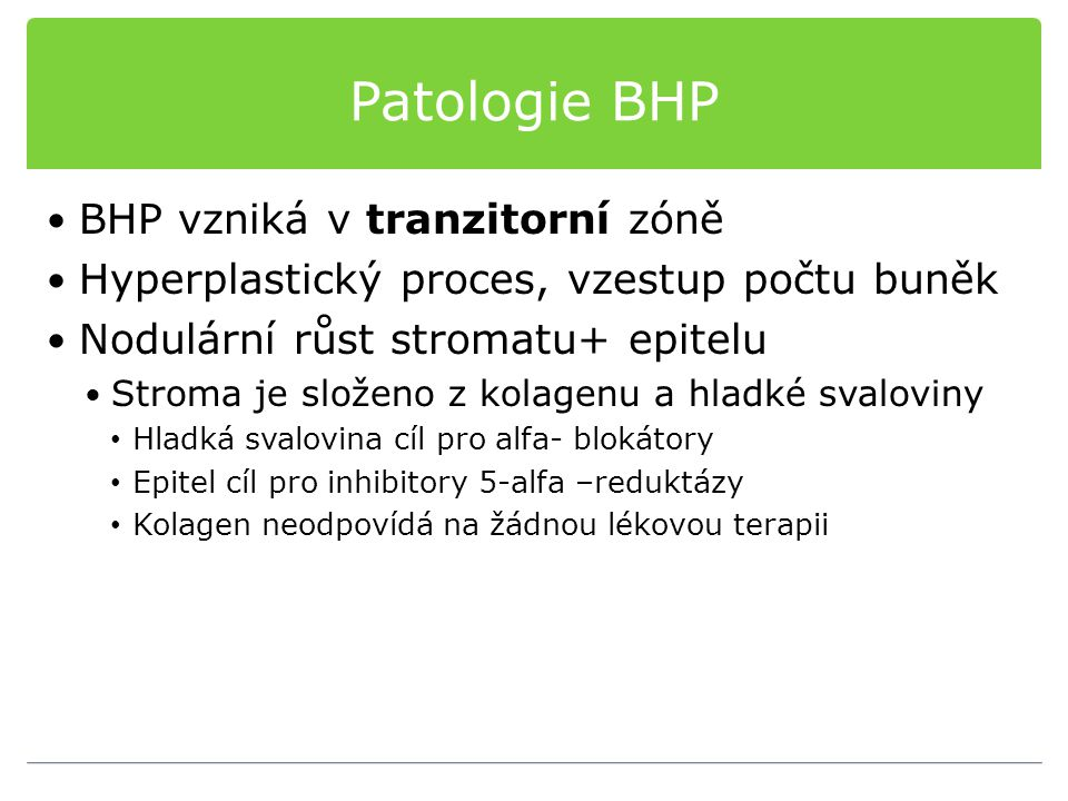 Patologie BHP BHP vzniká v tranzitorní zóně