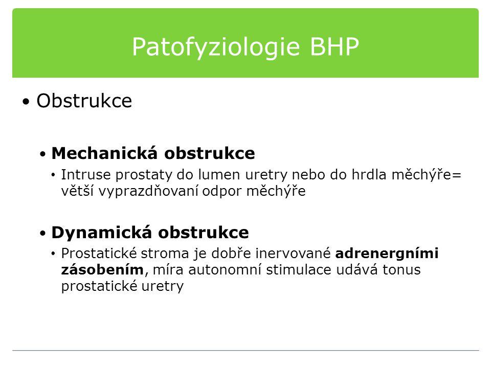 Patofyziologie BHP Obstrukce Mechanická obstrukce Dynamická obstrukce