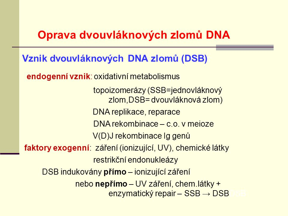 Oprava dvouvláknových zlomů DNA
