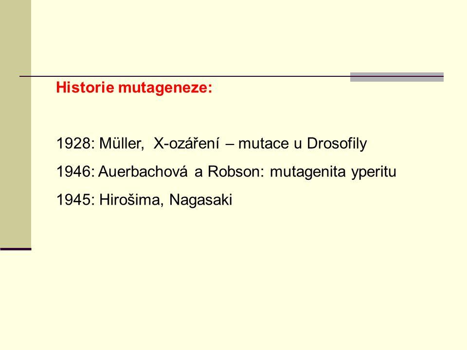 Historie mutageneze: 1928: Müller, X-ozáření – mutace u Drosofily. 1946: Auerbachová a Robson: mutagenita yperitu.