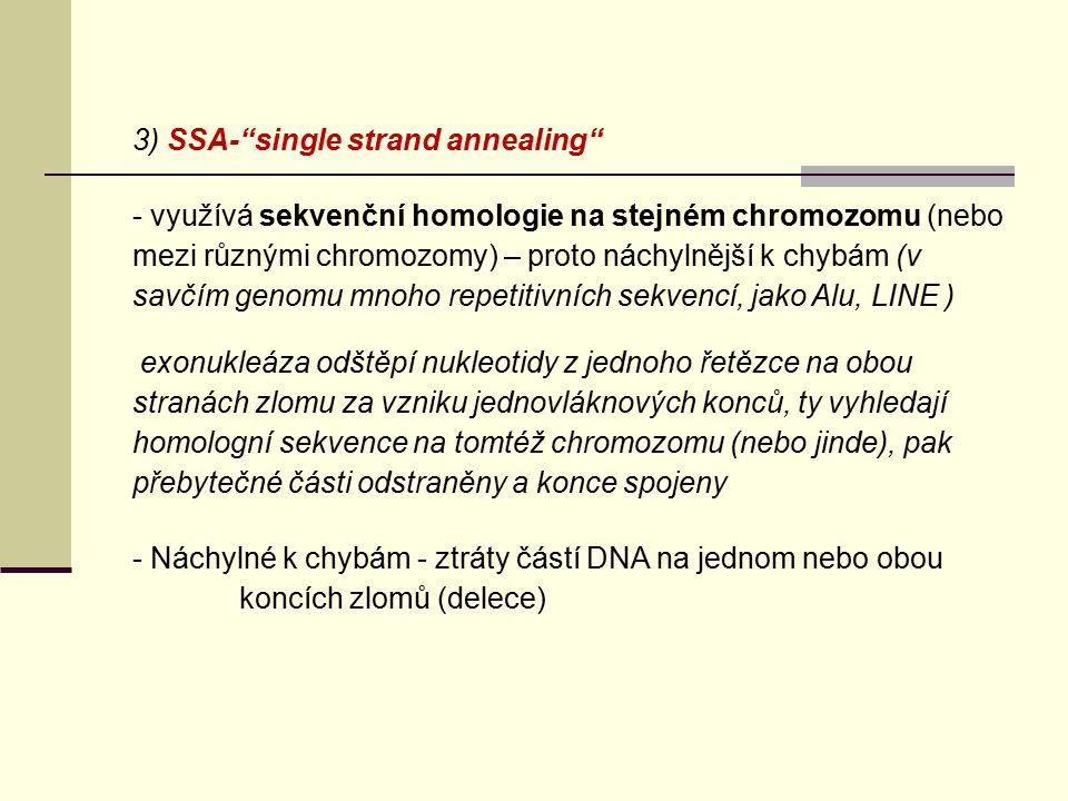 3) SSA- single strand annealing