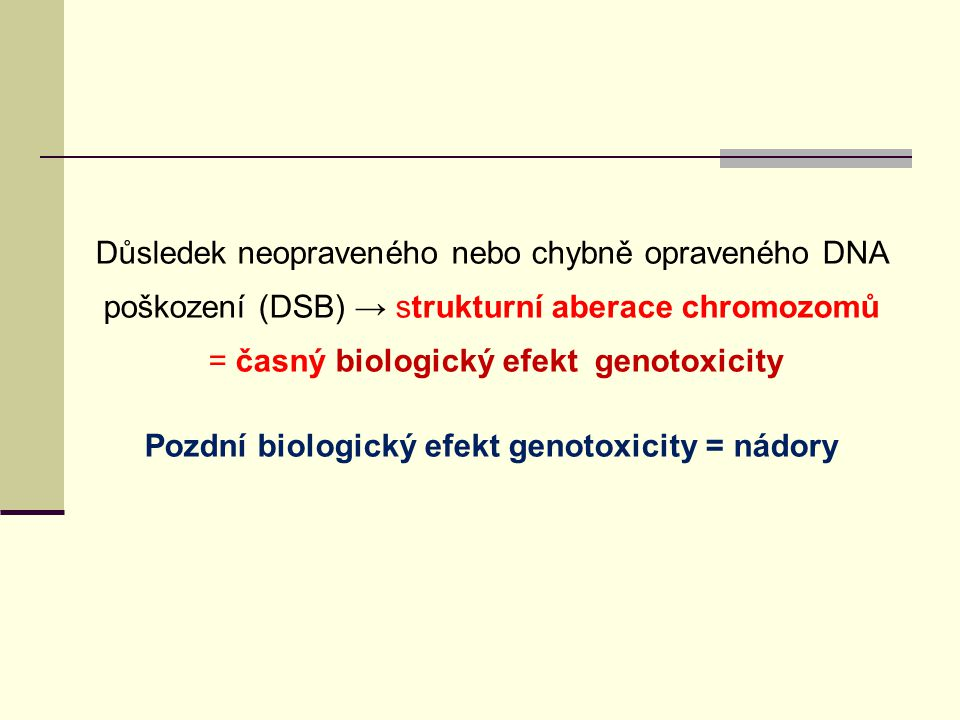 Pozdní biologický efekt genotoxicity = nádory