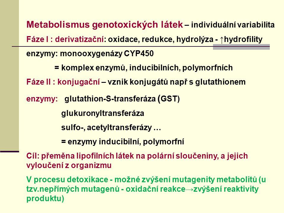 Metabolismus genotoxických látek – individuální variabilita