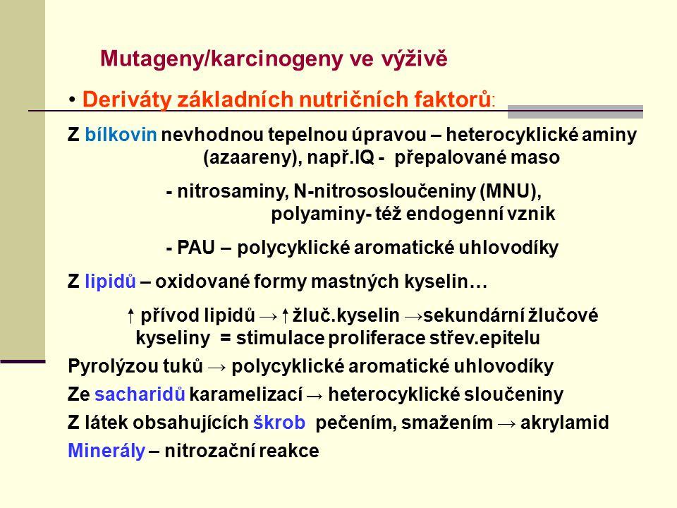 Deriváty základních nutričních faktorů: