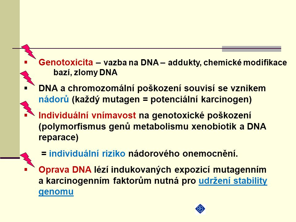 Genotoxicita – vazba na DNA – addukty, chemické modifikace