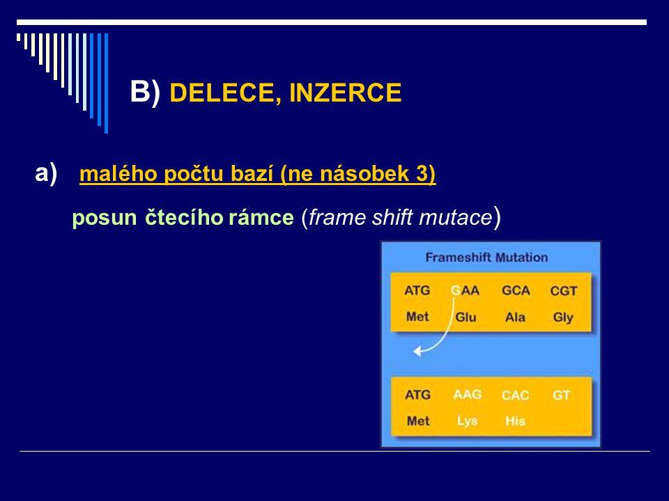 B) DELECE, INZERCE a) malého počtu bazí (ne násobek 3)