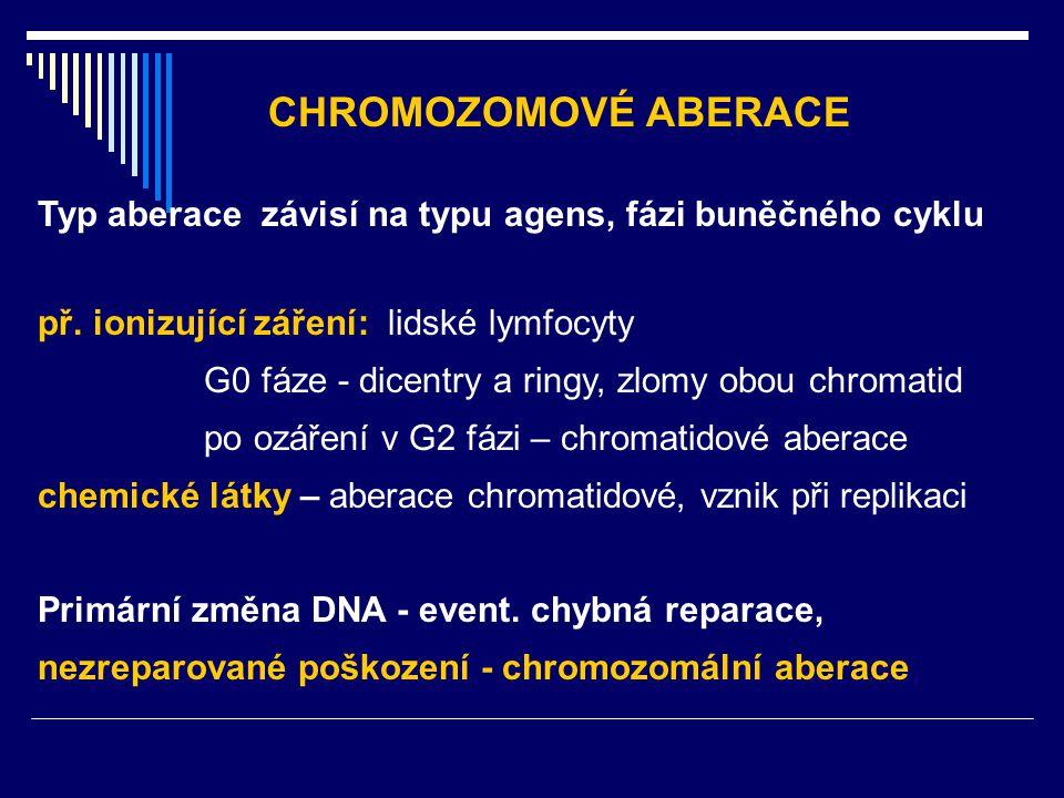 CHROMOZOMOVÉ ABERACE Typ aberace závisí na typu agens, fázi buněčného cyklu. př. ionizující záření: lidské lymfocyty.