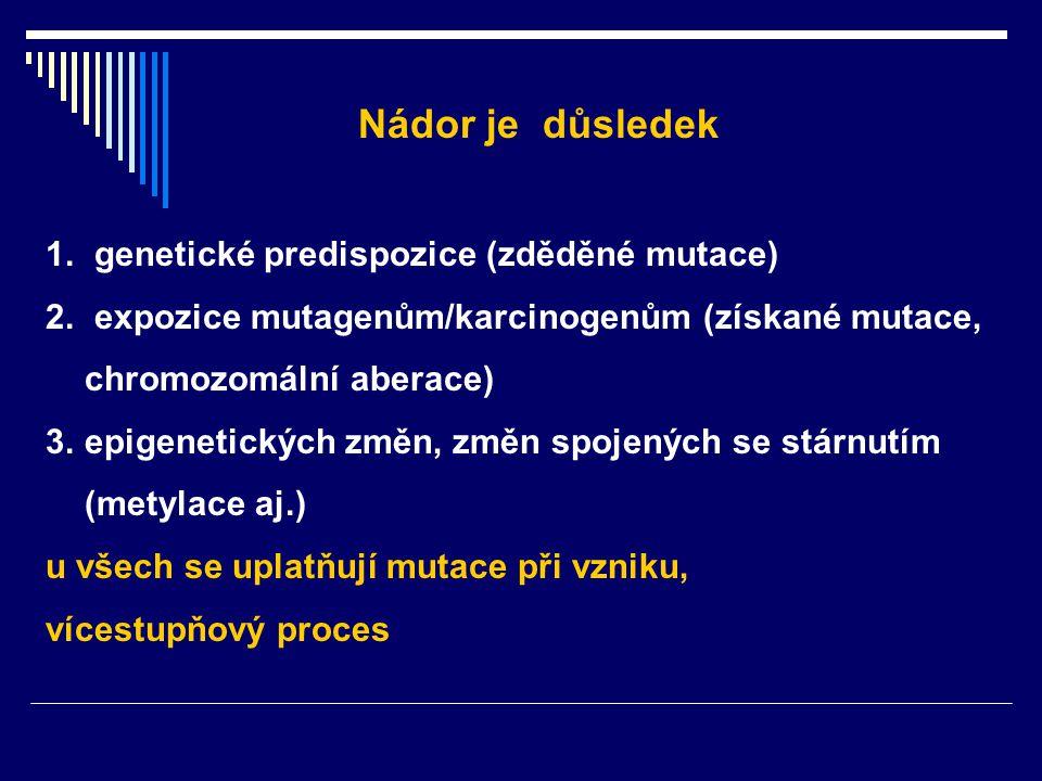 Nádor je důsledek genetické predispozice (zděděné mutace)
