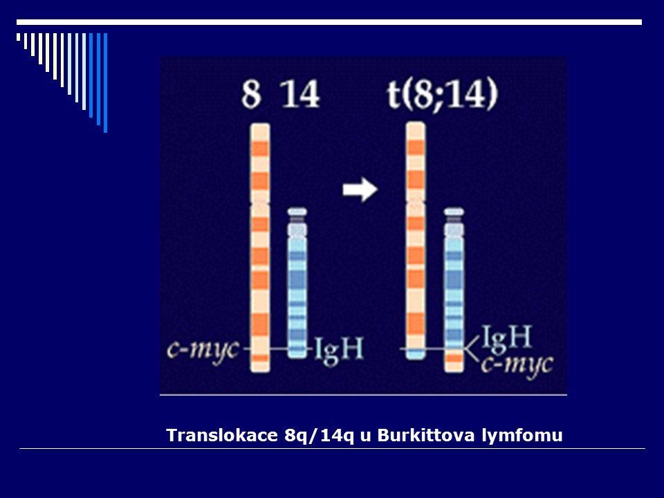 Translokace 8q/14q u Burkittova lymfomu