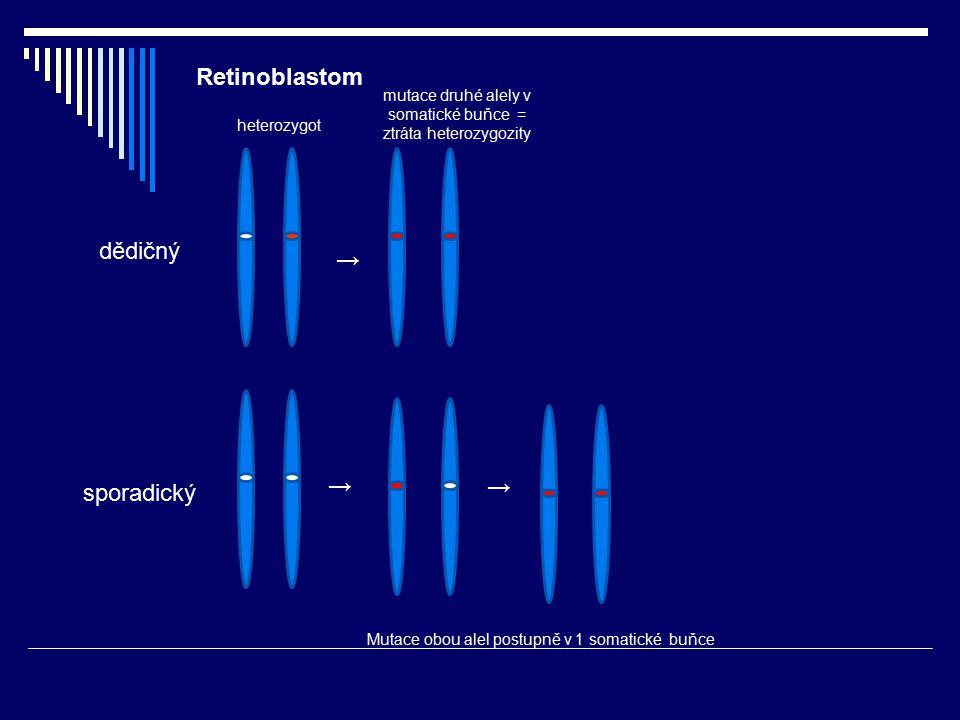 Retinoblastom dědičný → → → sporadický