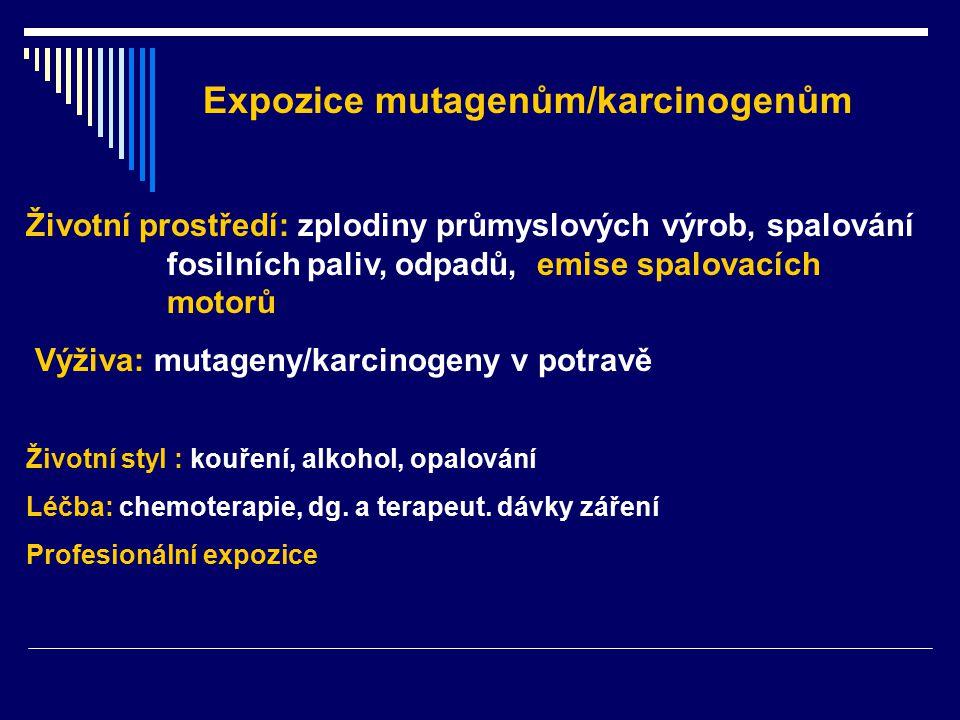 Expozice mutagenům/karcinogenům