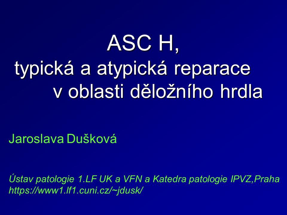 ASC H, typická a atypická reparace v oblasti děložního hrdla