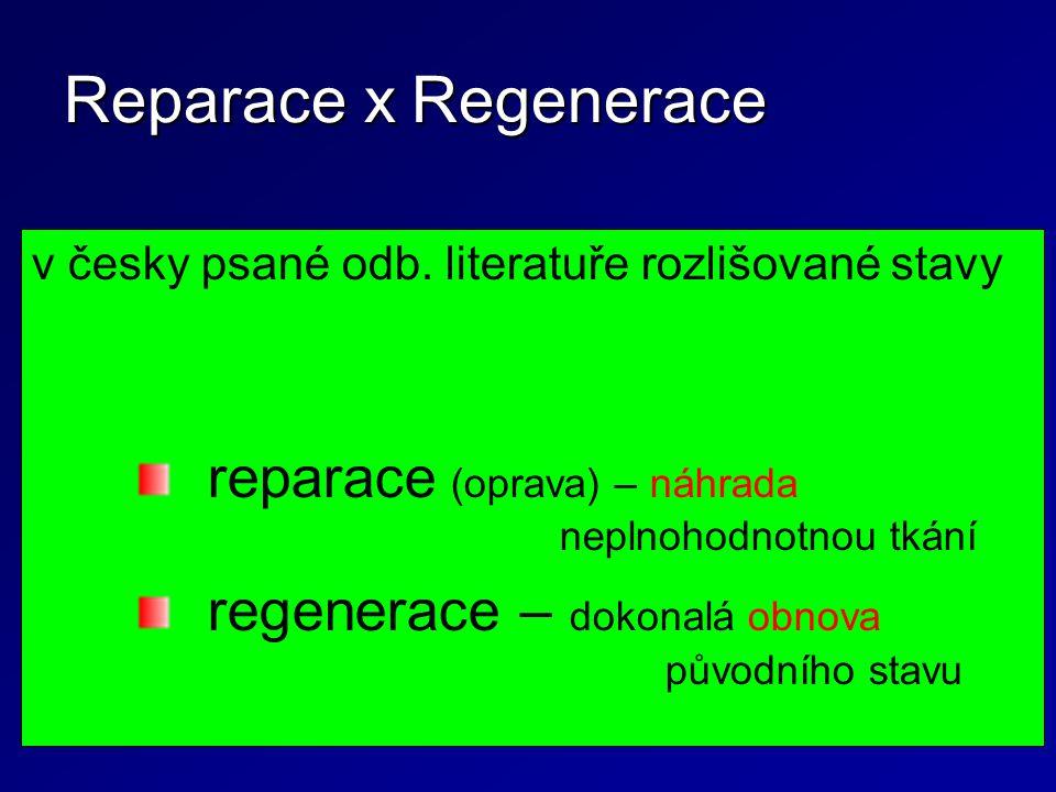 Reparace x Regenerace v česky psané odb. literatuře rozlišované stavy. reparace (oprava) – náhrada neplnohodnotnou tkání.