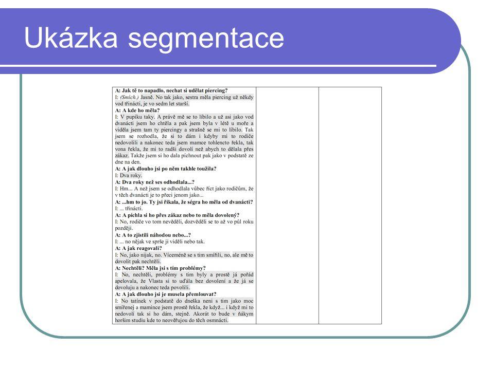Ukázka segmentace