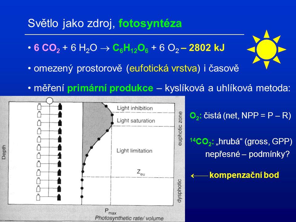 Světlo jako zdroj, fotosyntéza