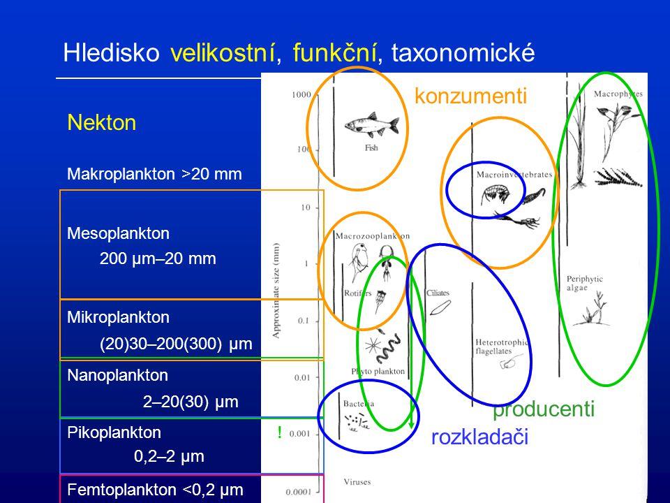 Hledisko velikostní, funkční, taxonomické
